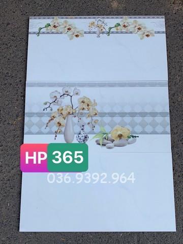 Gạch ốp tường 30x60 giá rẻ tại Trà Vinh HP365