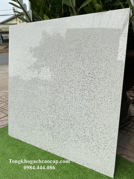 mẫu gạch khắc kim 800x800 ánh bạc
